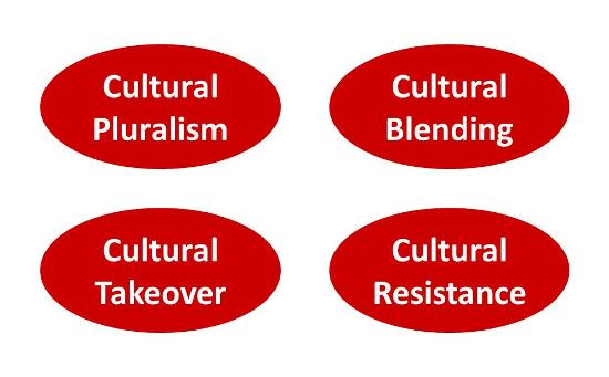 Types of cultural integration in a merger